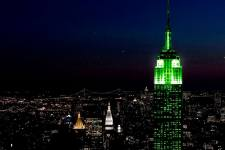 Saint Patrick's Day - Greenings19