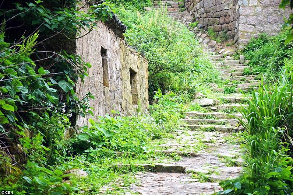 Aziatische huizen worden door natuur opgegeten