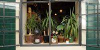 Tijdelijke interieur tips voor huurders