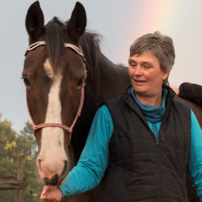 Paard en mens -werkruimte Interveste