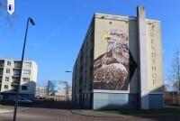 Uitgelicht aanbod Capelle aan den IJssel